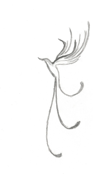 coletivo - desenho adriana - CAMINHOS